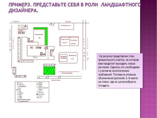 На рисунке представлен план пришкольного участка, на котором вам предстоит в...