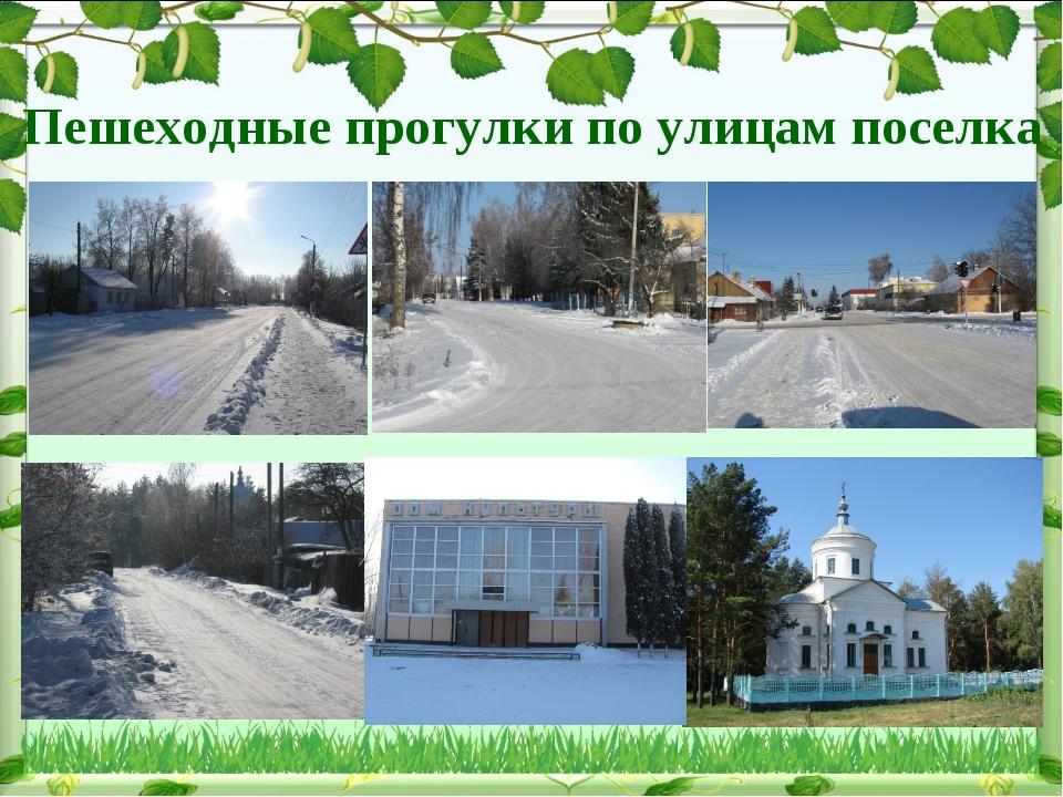 Пешеходные прогулки по улицам поселка
