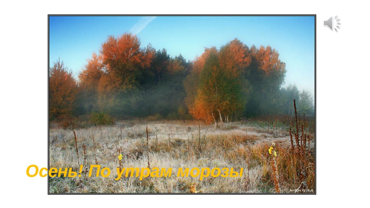 Осень! По утрам морозы