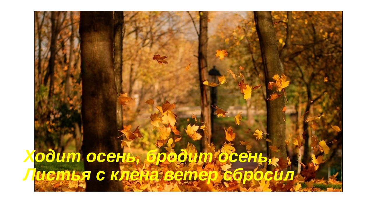 Ходит осень, бродит осень, Листья с клена ветер сбросил