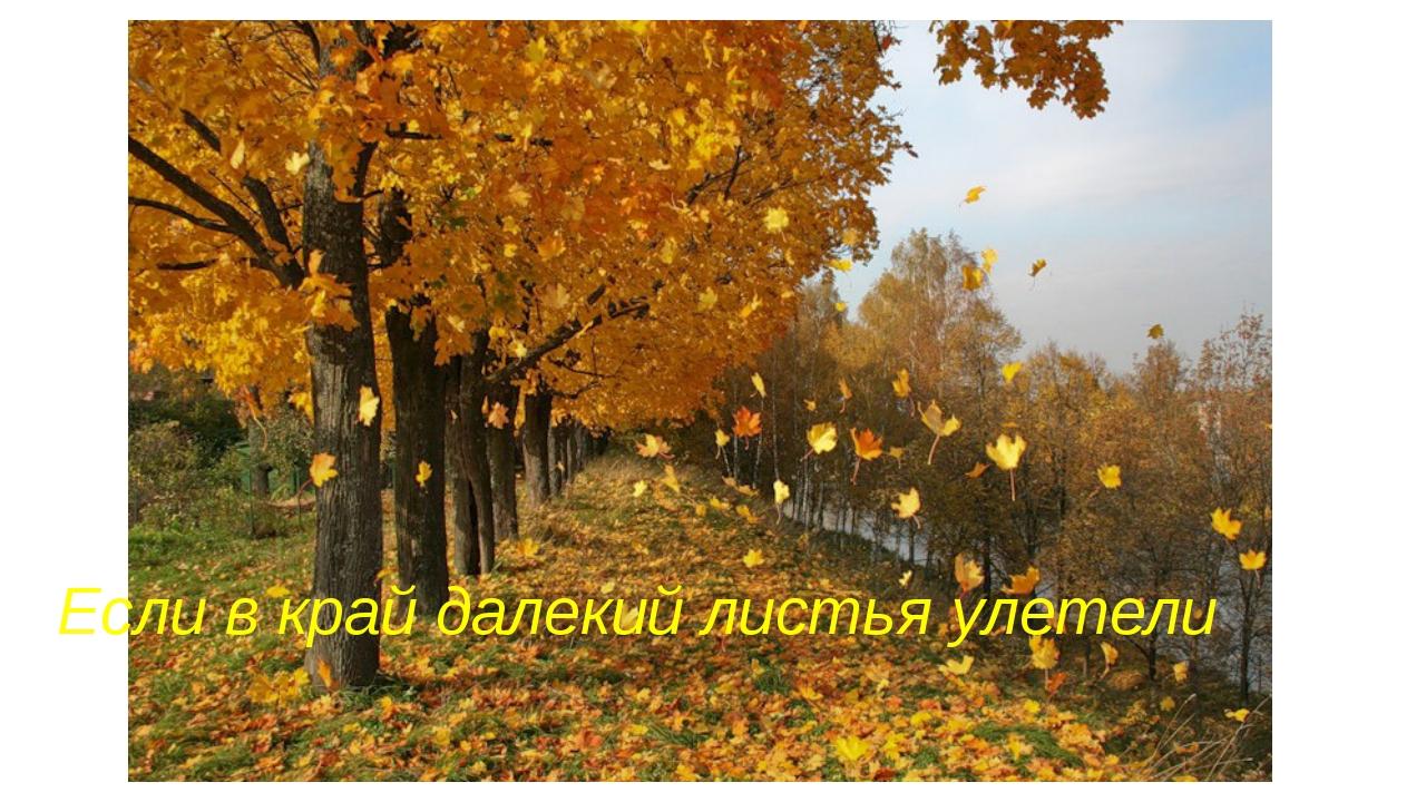 Если в край далекий листья улетели