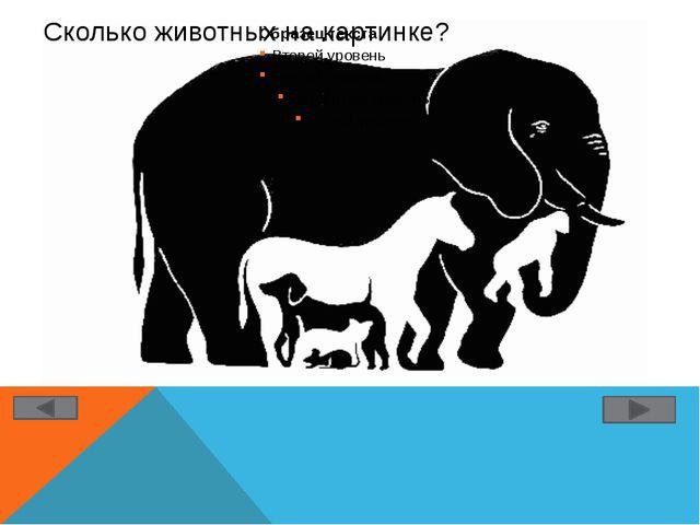 Сколько животных на картинке?