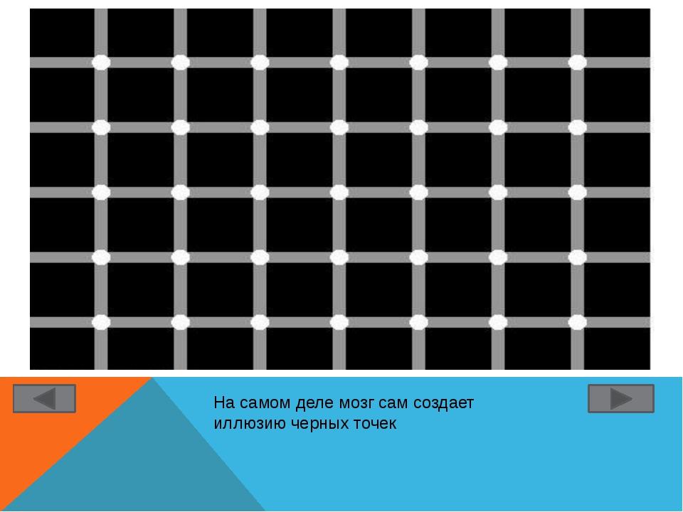 На самом деле мозг сам создает иллюзию черных точек