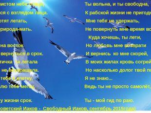 Ты как в чистом небе птица, Ты вольна, и ты свободна, Поднимутся с взглядом
