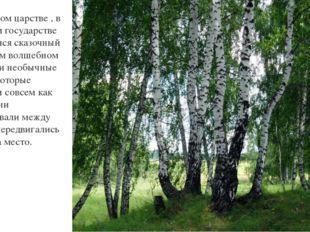 В некотором царстве , в некотором государстве простирался сказочный лес. В эт