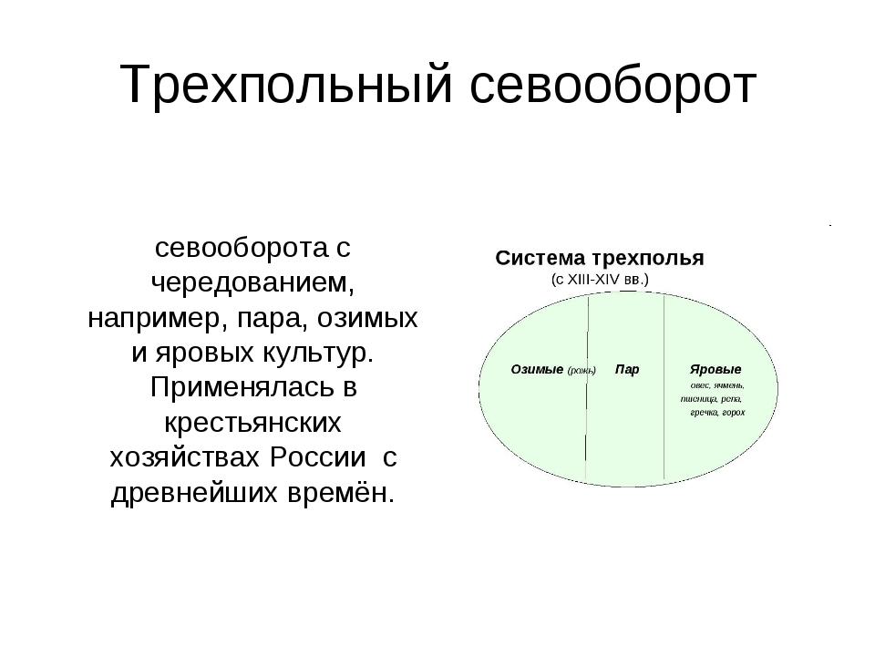 Трехпольный севооборот Трёхпо́лье, или трёхпо́лка — система севооборота с чер...