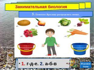 Занимательная биология 5. Помогите Ярославу распределить овощи. 1. г-д-е. 2.