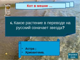 Кот в мешке … 6. Какое растение в переводе на русский означает звезда? Астра