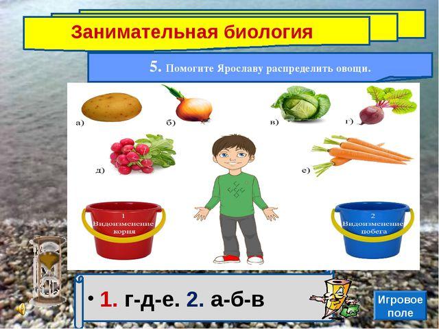 Занимательная биология 5. Помогите Ярославу распределить овощи. 1. г-д-е. 2....