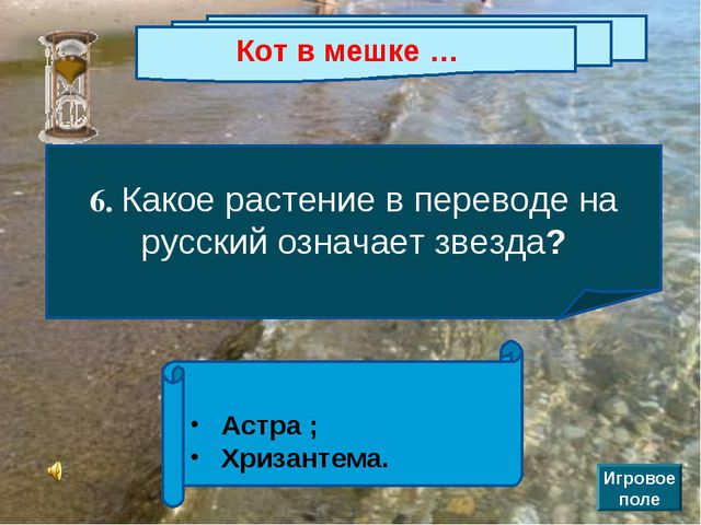 Кот в мешке … 6. Какое растение в переводе на русский означает звезда? Астра...