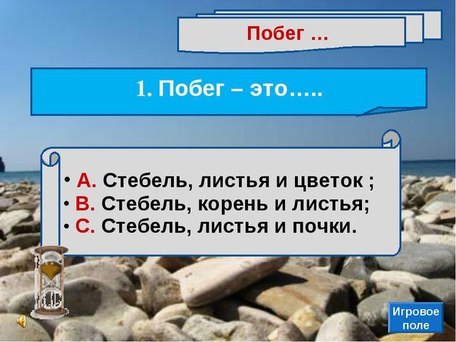 А. Стебель, листья и цветок ; В. Стебель, корень и листья; С. Стебель, листь...