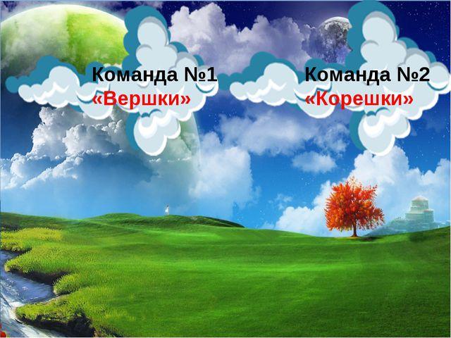 Команда №2 «Корешки» Команда №1 «Вершки»