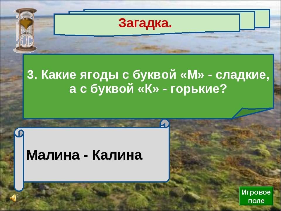 Малина - Калина Загадка. 3. Какие ягоды с буквой «М» - сладкие, а с буквой «К...