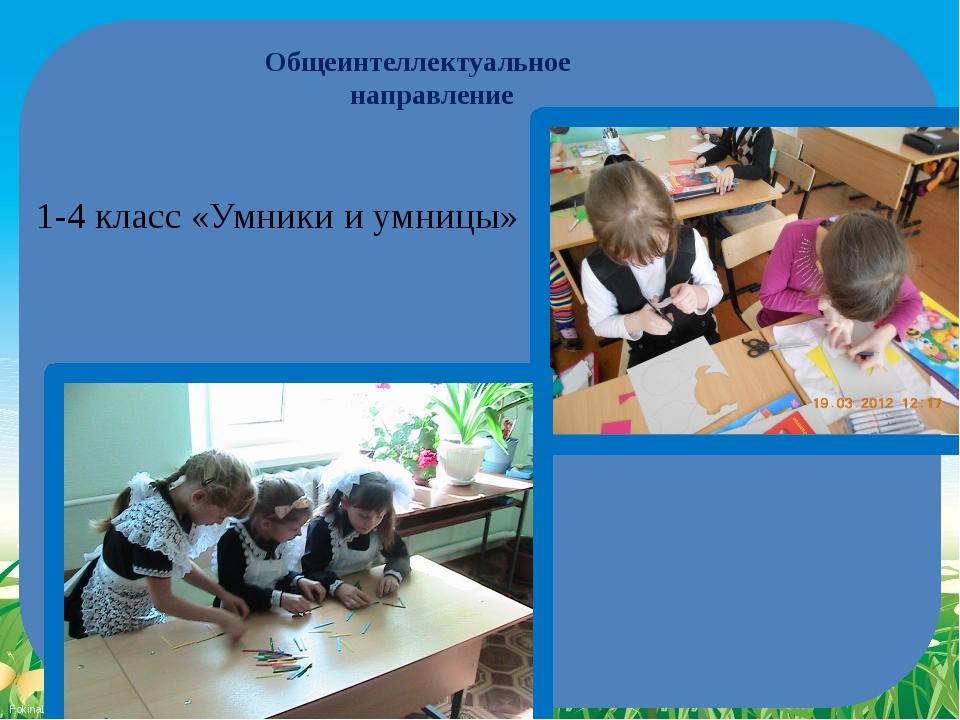 Общеинтеллектуальное направление 1-4 класс «Умники и умницы» FokinaLida.75@ma...