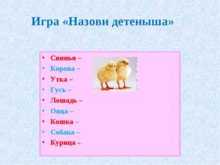 Игра «Назови детеныша» Свинья – Корова – Утка – Гусь – Лошадь – Овца – Кошка