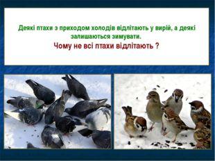 Деякі птахи з приходом холодів відлітають у вирій, а деякі залишаються зимува