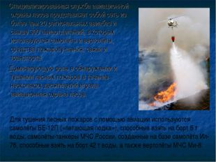 Специализированная служба авиационной охраны лесов представляет собой сеть и