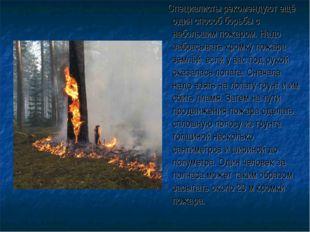 Специалисты рекомендуют ещё один способ борьбы с небольшим пожаром. Надо заб