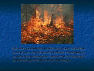 Если в лесу вы наткнулись на небольшой пожар, попробуйте остановить его дост