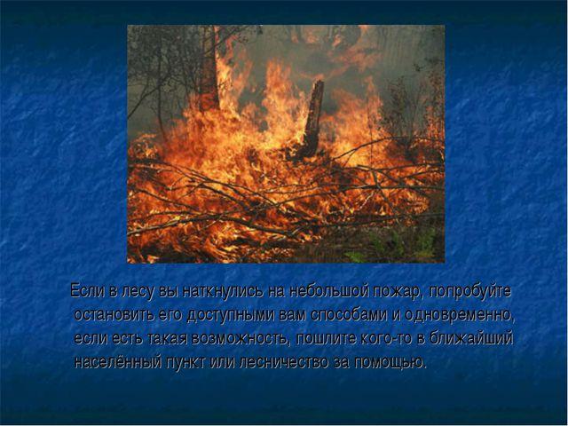 Если в лесу вы наткнулись на небольшой пожар, попробуйте остановить его дост...
