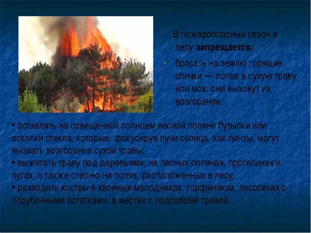 В пожароопасный сезон в лесу запрещается: бросать на землю горящие спички —...