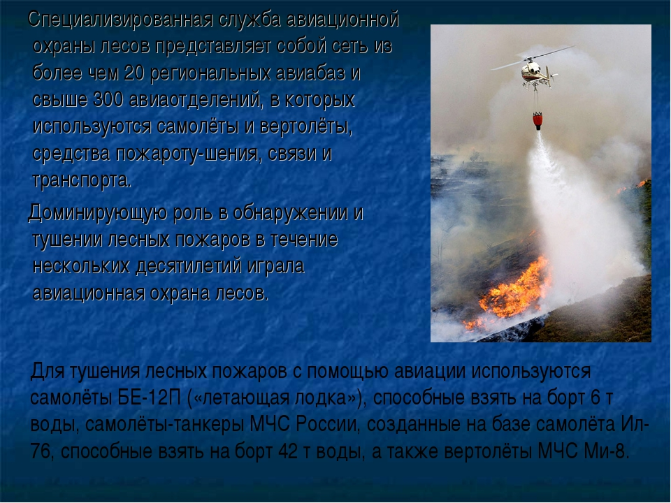 Специализированная служба авиационной охраны лесов представляет собой сеть и...