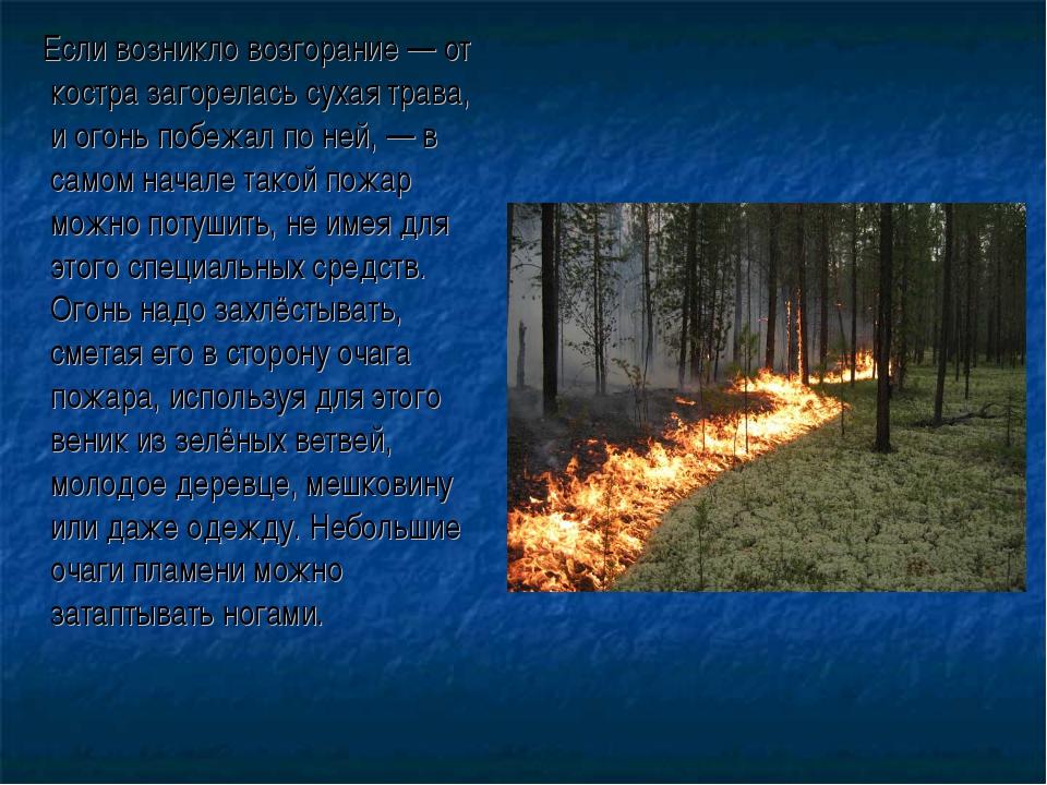 Если возникло возгорание — от костра загорелась сухая трава, и огонь побежал...