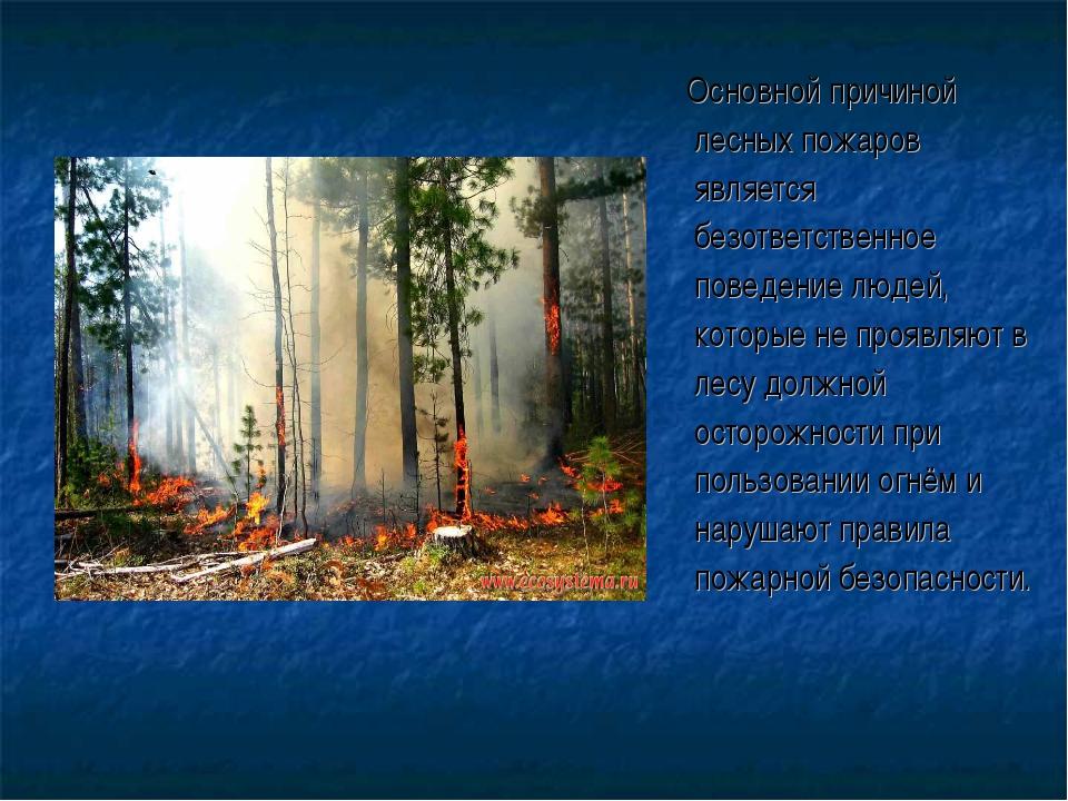 Основной причиной лесных пожаров является безответственное поведение людей,...