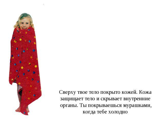 Сверху твое тело покрыто кожей. Кожа защищает тело и скрывает внутренние орга...