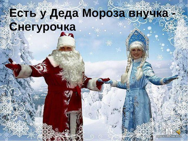 Есть у Деда Мороза внучка - Снегурочка