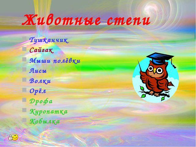 Животные степи Тушканчик Сайгак Мыши полёвки Лисы Волки Орёл Дрофа Куропатка...