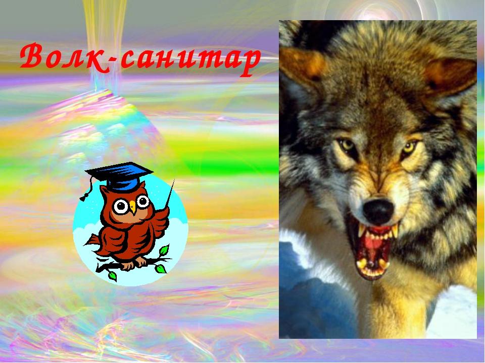 Волк-санитар