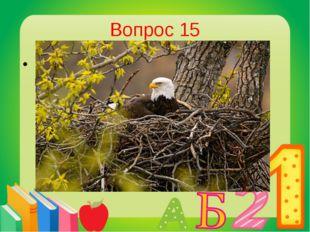 Вопрос 15 Кто из птиц строит самое большое гнездо? Орел