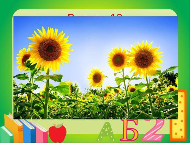 Вопрос 13 Какое растение всегда поворачивается за солнцем? Подсолнух