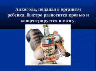 Алкоголь, попадая в организм ребенка, быстро разносится кровью и концентрируе