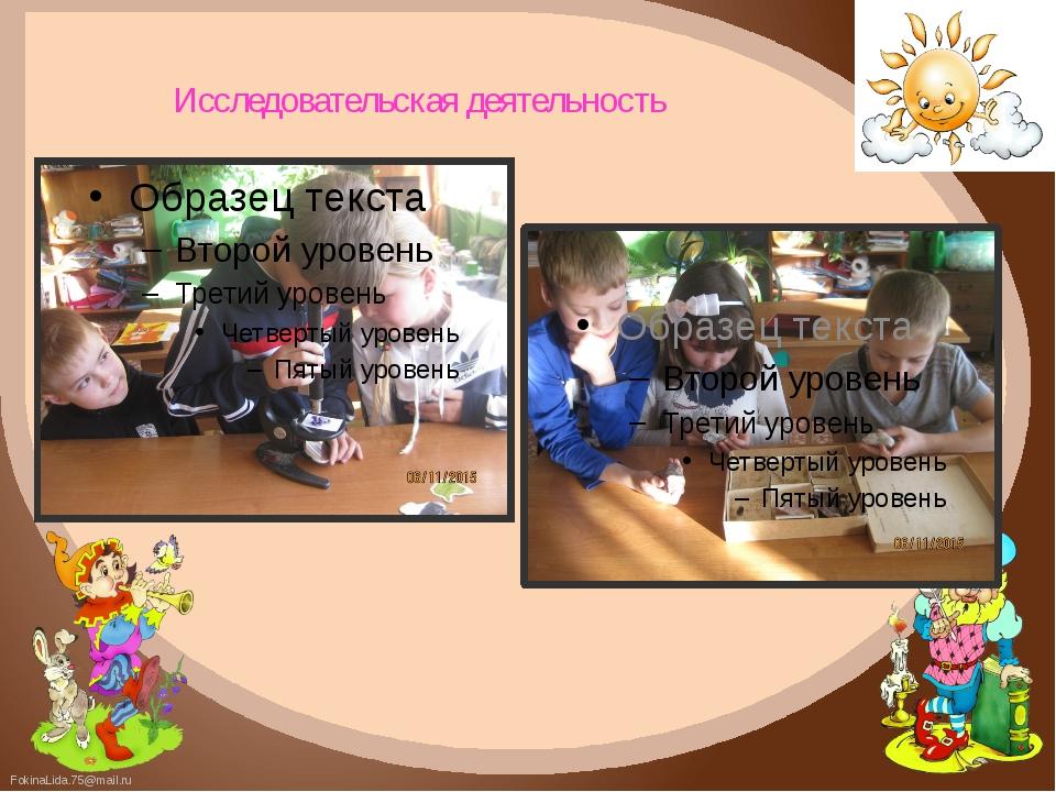 Исследовательская деятельность FokinaLida.75@mail.ru
