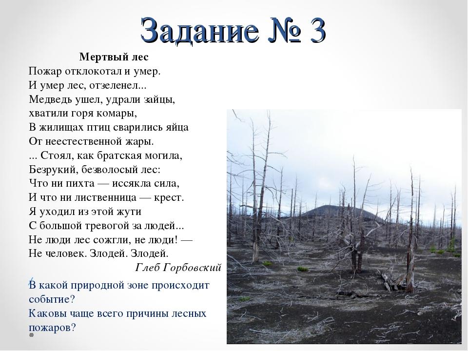 Задание № 3 Мертвый лес Пожар отклокотал и умер. И умер лес, отзеленел... Мед...