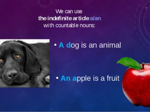 We can use the indefinite article a/an with countable nouns: A dog is an anim