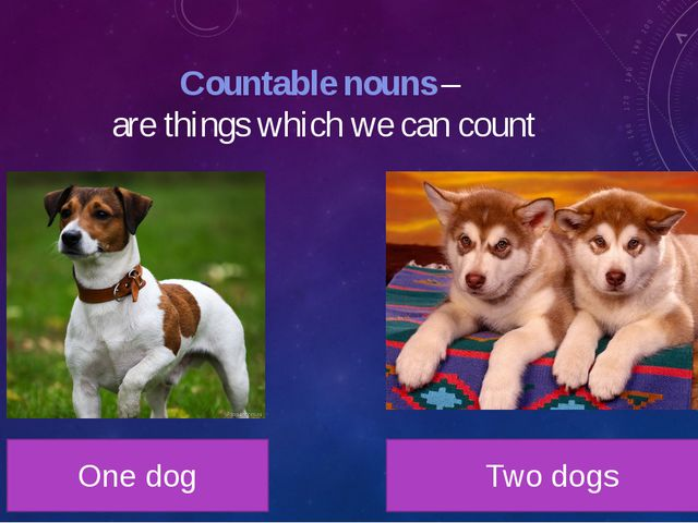 Countable nouns – are things which we can count One dog Two dogs