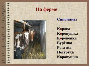 На ферме Синонимы Корова Коровушка Коровёнка Бурёнка Рогатка Пеструха Коровушка