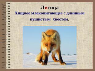 Лисица Хищное млекопитающее с длинным пушистым хвостом.