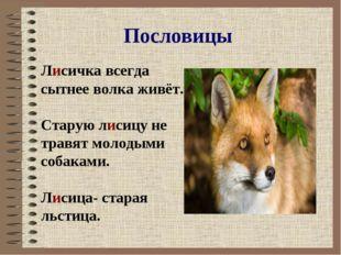 Пословицы Лисичка всегда сытнее волка живёт. Старую лисицу не травят молодыми