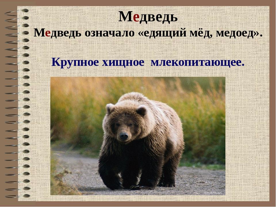 Медведь Медведь означало «едящий мёд, медоед». Крупное хищное млекопитающее.