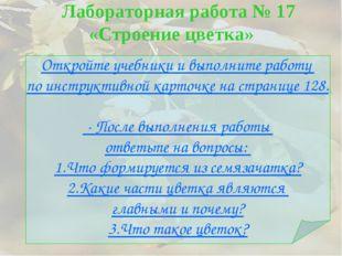 Лабораторная работа № 17 «Строение цветка» Откройте учебники и выполните раб