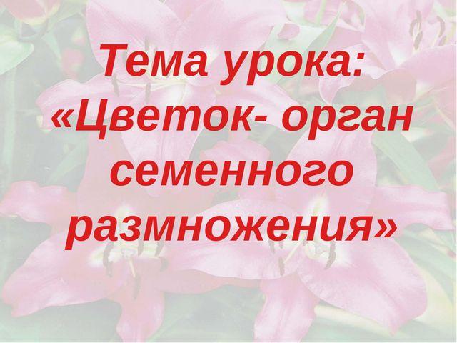 Тема урока: «Цветок- орган семенного размножения»