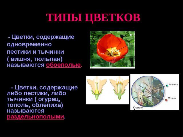 ТИПЫ ЦВЕТКОВ - Цветки, содержащие одновременно пестики и тычинки ( вишня, тю...