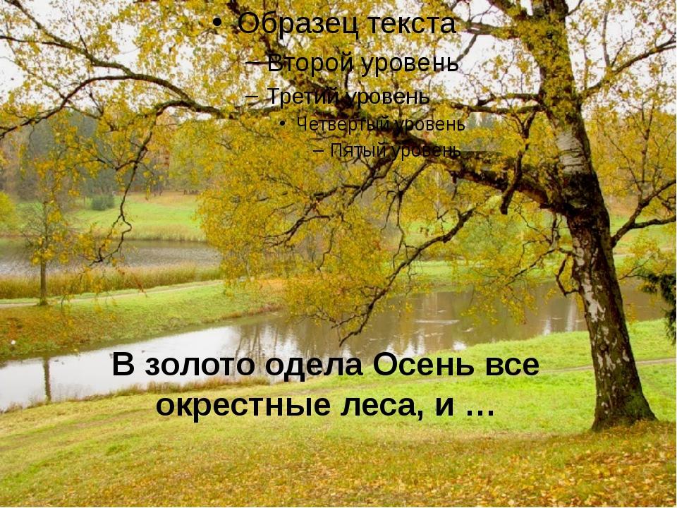 В золото одела Осень все окрестные леса, и …