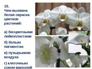 15. Чем вызвана белая окраска цветков растений: а) бесцветными лейкопластами
