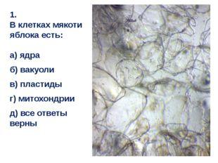 1. В клетках мякоти яблока есть: а) ядра б) вакуоли в) пластиды г) митохондри
