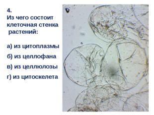 4. Из чего состоит клеточная стенка растений: а) из цитоплазмы б) из целлофан